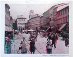 foto della collezione